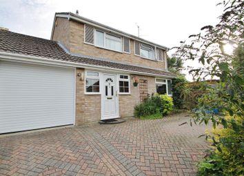 Thumbnail 4 bedroom link-detached house for sale in Blackbird Close, Basingstoke