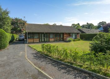 Thumbnail 3 bedroom detached bungalow for sale in Grange Road, Broadstairs