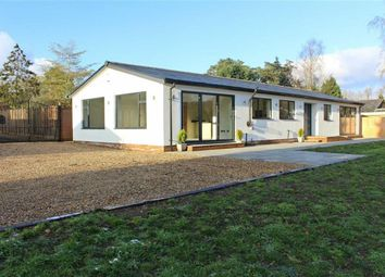Thumbnail Detached bungalow for sale in Danesbury Park Road, Welwyn, Welwyn, Hertfordshire