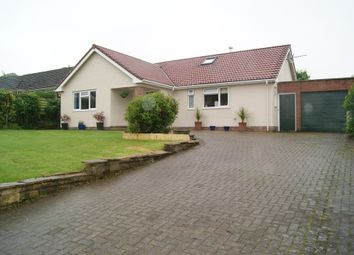 Thumbnail 5 bed detached bungalow for sale in Westaway Road, Colyton