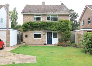 Thumbnail 4 bed detached house to rent in Nyewood, Petersfield