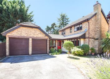 Thumbnail 4 bed detached house for sale in Albany Park Drive, Winnersh, Wokingham, Berkshire