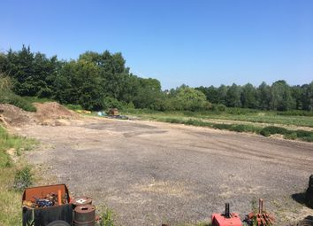 Thumbnail Commercial property to let in London Road, Marks Tey, Colchester