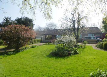Thumbnail 4 bedroom detached bungalow for sale in Water Lane, Barnham, Thetford