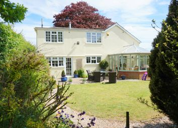 Thumbnail 4 bed detached house for sale in Hadleigh Road, Holton St Mary, Ipswich, Suffolk