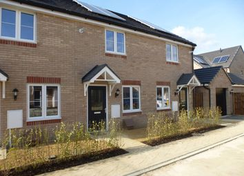 Thumbnail 2 bed property to rent in Merlin Road, Priors Hall Park, Corby