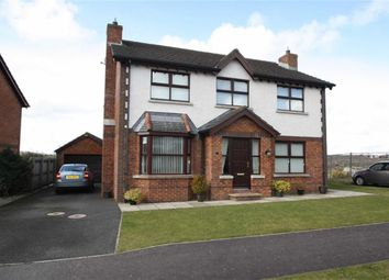 Thumbnail 4 bed detached house for sale in Edengrove Park West, Ballynahinch, Down