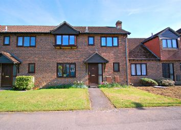 Thumbnail 3 bed detached house to rent in Moggs Mead, Petersfield