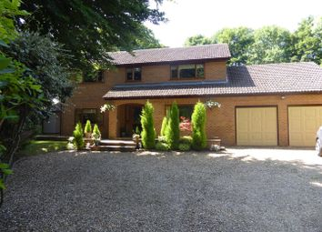 Thumbnail 4 bed detached house for sale in Clipsham Road, Stretton, Oakham