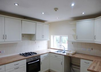 Thumbnail 2 bed flat to rent in Lyme Street, Axminster