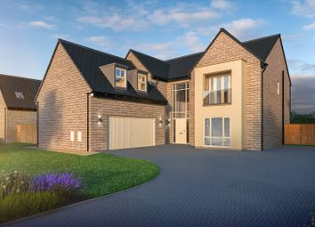 Thumbnail 5 bed detached house for sale in New Lane, Dishforth