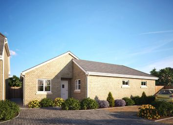 Thumbnail 3 bed detached bungalow for sale in Luke Street, Eynesbury, St. Neots