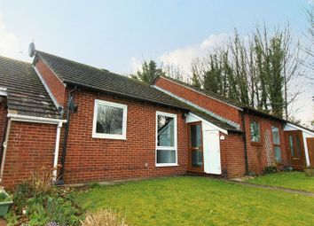 Thumbnail 2 bed bungalow to rent in Fowey Avenue, Torquay