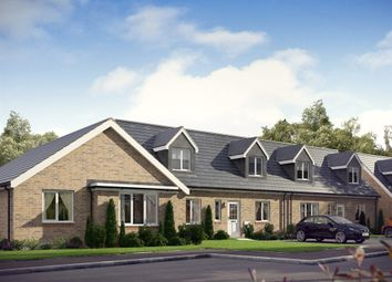 "Thumbnail 3 bedroom bungalow for sale in ""The Clyde"" at Dunlop Road, Stewarton, Kilmarnock"