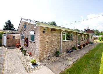 Thumbnail 3 bed bungalow for sale in Millbrook Way, Orleton, Ludlow