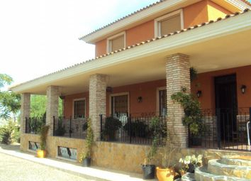 Thumbnail 7 bed country house for sale in Abaran, Abarán, Murcia, Spain