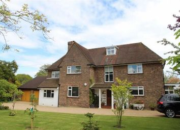 Thumbnail 5 bed detached house to rent in Wishing Tree Road, St. Leonards-On-Sea