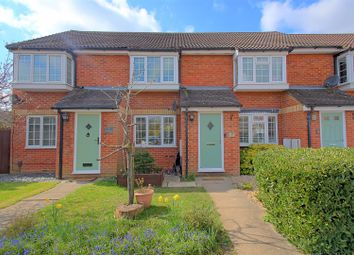 Thumbnail 2 bed terraced house for sale in The Springs, Tamworth Road, Hertford