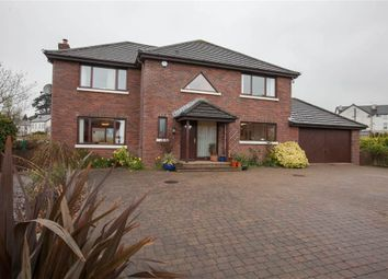 Thumbnail 4 bed detached house for sale in 16, Old Shore Road, Carrickfergus