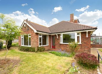 Thumbnail 4 bed detached bungalow for sale in Broaden Lane, Hempnall, Norwich