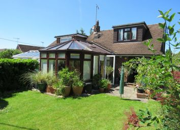 Thumbnail 3 bed semi-detached bungalow to rent in Chalklands, Bourne End