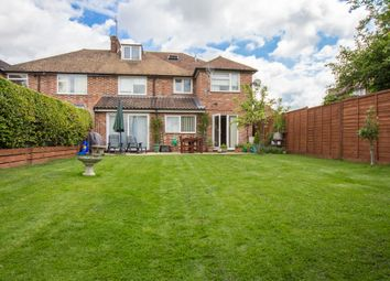 Thumbnail 6 bedroom semi-detached house for sale in Chalk Grove, Cambridge
