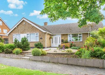 Thumbnail 3 bedroom detached bungalow for sale in Coverside Road, Great Glen, Leicester