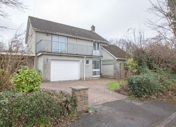 Thumbnail 4 bed detached house for sale in Little Fancy Close, Plymouth