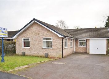 Thumbnail 3 bed bungalow for sale in Pear Tree Avenue, Coppull, Chorley