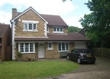 Thumbnail 4 bed property to rent in Roth Drive, Hutton, Brentwood