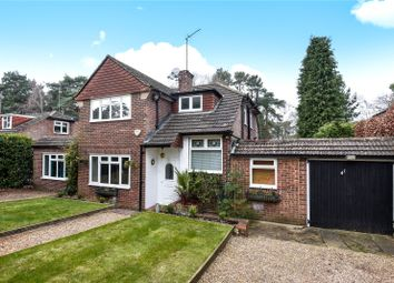 Thumbnail 4 bed detached house for sale in Pine Tree Hill, Pyrford, Woking