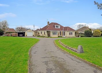 Thumbnail 4 bed detached bungalow for sale in Longsplatt, Kingsdown, Corsham
