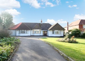 Thumbnail 4 bed bungalow to rent in Eastwick Drive, Bookham, Leatherhead