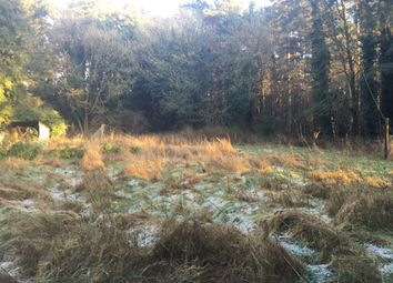 Thumbnail Land for sale in Lynford Road, Mundford, Thetford