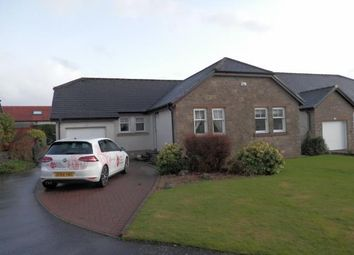 Thumbnail 4 bed bungalow to rent in Almond View, Perth
