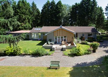 Thumbnail 3 bed bungalow for sale in Palace Road, Blairgowrie