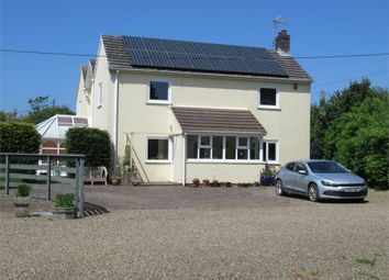 Thumbnail 5 bed detached house for sale in Green Plain, 185 St David's Road, Letterston, Haverfordwest, Pembrokeshire