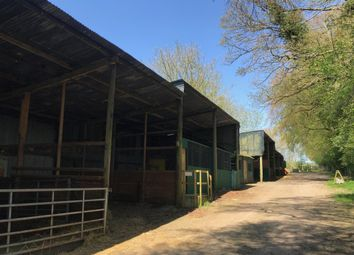 Thumbnail Commercial property to let in Worting Road, Worting, Basingstoke