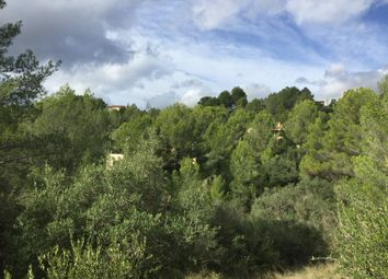 Thumbnail Land for sale in 07110, Bunyola, Spain