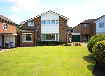 Thumbnail 4 bed detached house to rent in Sycamore Crescent, Church Crookham, Fleet