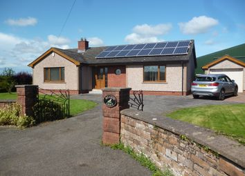 Thumbnail 3 bedroom detached bungalow to rent in Cumdivock, Dalston, Carlisle