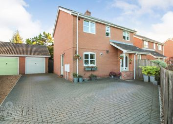 Thumbnail 3 bed detached house for sale in High Banks, Off The Lizard, Wymondham