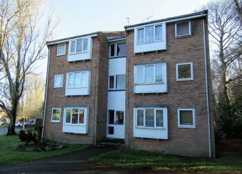 Thumbnail Studio for sale in Holly Drive, Waterlooville
