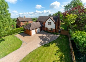 Thumbnail 4 bedroom detached house for sale in Old Norwich Road, Ipswich