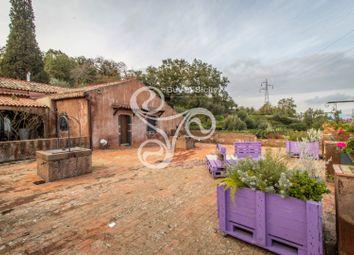 Thumbnail 20 bed farmhouse for sale in Strada Provinciale 59iv, Piedimonte Etneo, Catania, Sicily, Italy