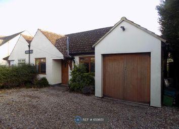 Thumbnail 4 bedroom bungalow to rent in Broomhill, Beenham