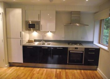 Thumbnail 2 bed flat to rent in Park View, Weirdale Road, London
