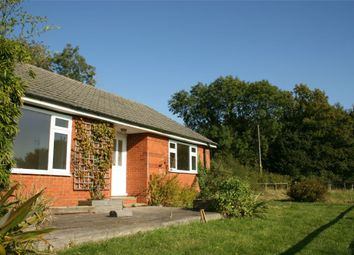 Thumbnail 3 bed bungalow to rent in Bighton Hill, Ropley, Alresford, Hampshire