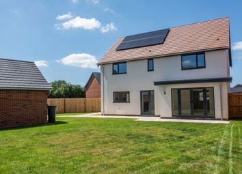Thumbnail 4 bed detached house for sale in Mill Road, Little Melton, Norwich
