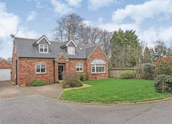 Thumbnail 4 bed detached house to rent in Northfield Close, Hull